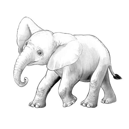 cartoon scene with little elephant on white background safari coloring page sketchbook illustration for children Banque d'images - 124513019
