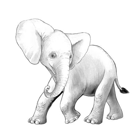 cartoon scene with little elephant on white background safari coloring page sketchbook illustration for children Banque d'images - 124513024