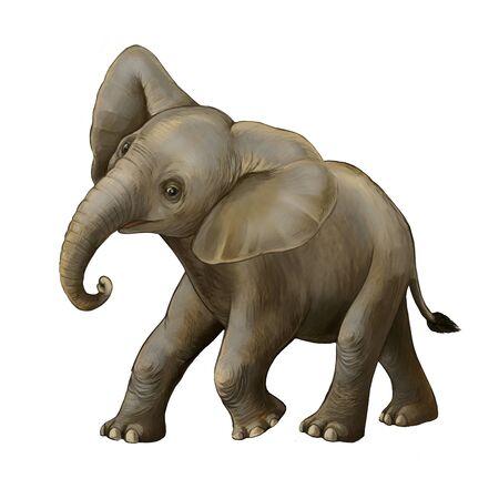 cartoon scene with little elephant on white background safari illustration for children Banque d'images - 124513026
