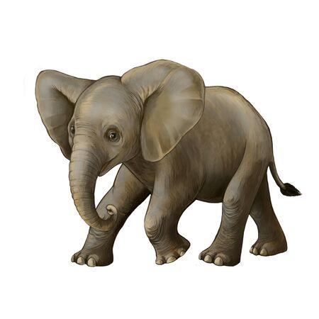 cartoon scene with little elephant on white background safari illustration for children Banque d'images - 124513029