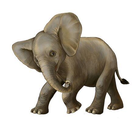 cartoon scene with little elephant on white background safari illustration for children Banque d'images - 124513028
