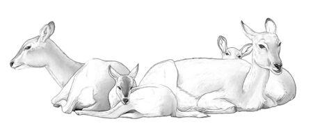 cartoon scene with koba lychee safari animal - sketchbook coloring page - illustration for children