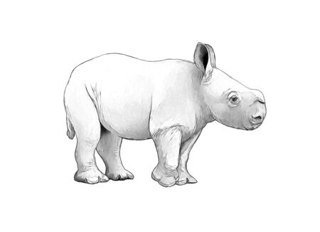 cartoon scene with rhinoceros safari animal coloring page illustration for children