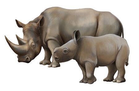 cartoon scene with rhinoceros safari animal illustration for children