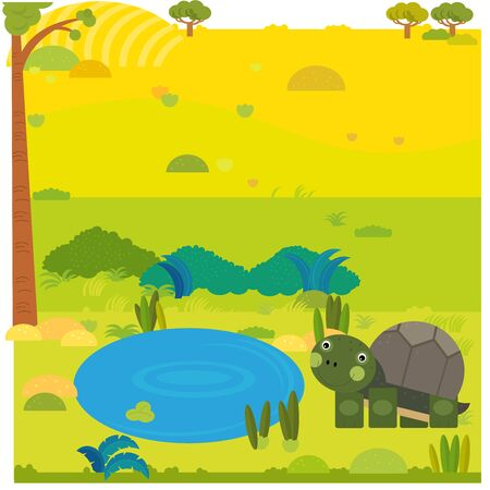 cartoon safari scene with wild animal turtle on the meadow illustration for children