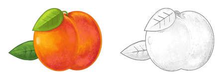 cartoon peach on white background - illustration for children