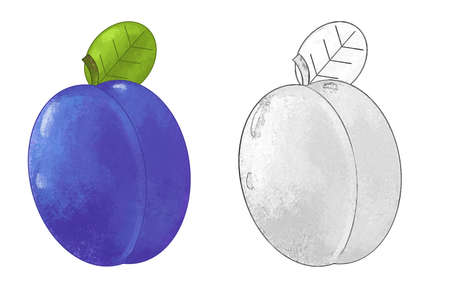 cartoon fruit plum on white background - illustration for children