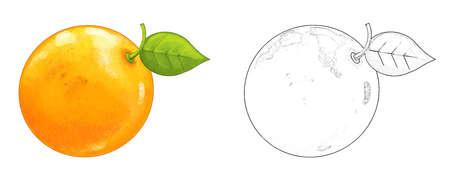 cartoon fruit orange on white background - illustration for children 免版税图像