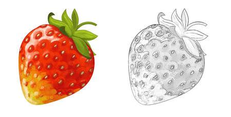 cartoon fruit strawberry on white background - illustration for children