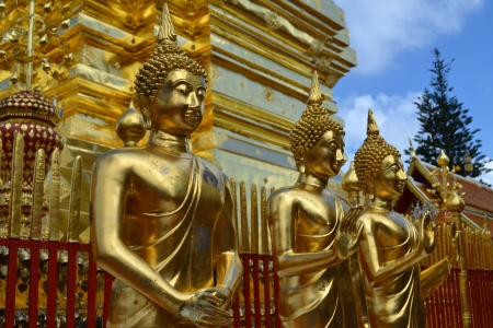 Buddha statues in Chiang Mai, Thailand  photo
