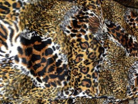 close up tiger pattern background photo