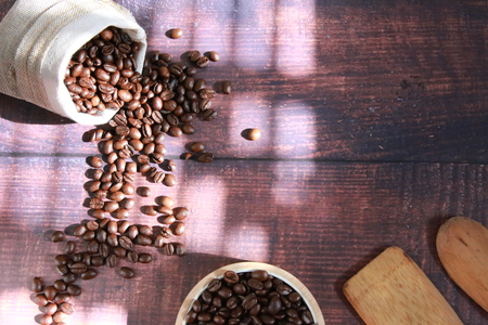 Coffee beans and morning sun Stock Photo
