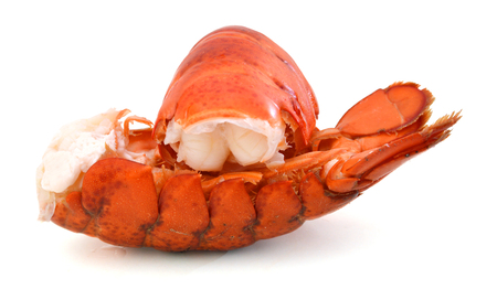 red lobster tail