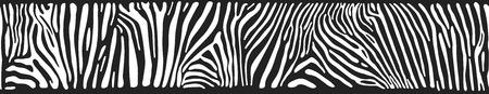 Grote horizontale naadloze achtergrond met Zebra textuur