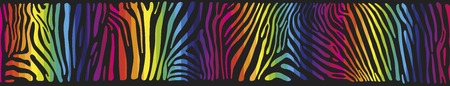 panoramic nature: Great horisontally seamless vector background with Zebra skin  painted in the colors of the rainbow