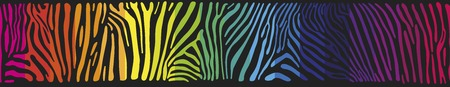 zebra skin: Great horisontally seamless vector background with Zebra skin  painted in the colors of the rainbow