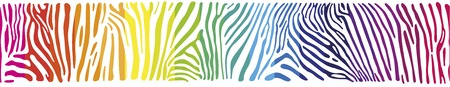 polychromatic: Great horisontally seamless vector background with Zebra skin  painted in the colors of the rainbow