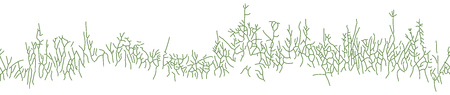 bush mesh: Great horisontally seamless vector background with grass or herb in linear drawing style