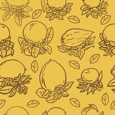 linoleum: Seamless vector illustration of various citrus fruits with tropical flowers and leaves