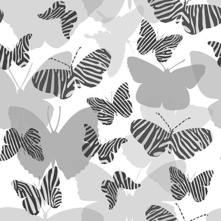 Seamless pattern in gray tones with butterflies painted Zebra Illustration