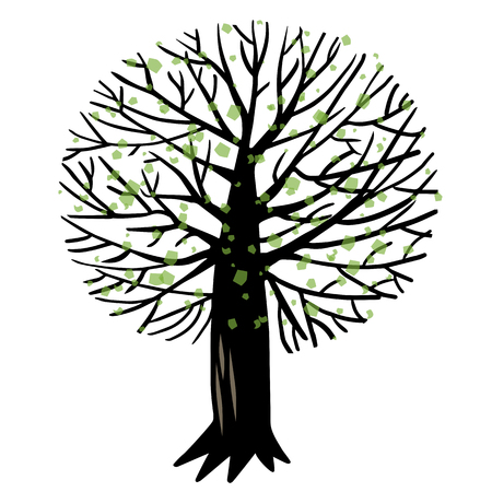 tree trimming: illustration with spring Apple tree or cherry tree Illustration