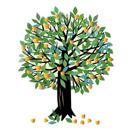 Ilustración de un árbol frutal. albaricoquero