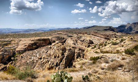 arid: arid desert land in arizona