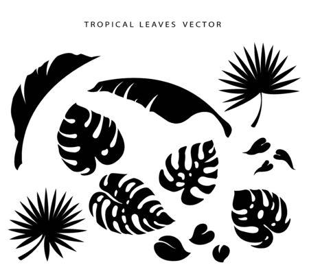 Set of tropical leafs Ilustração
