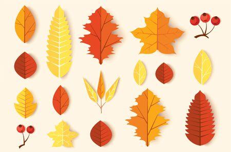 Autumn leaves set vector illustration EPS10