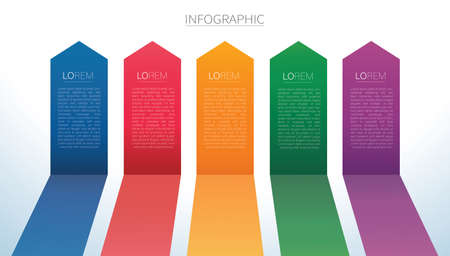 colorful arrow lines Infographic 5 options background vector illustration