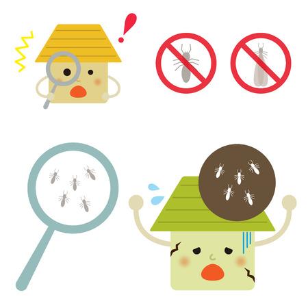 multiple house: Termite damage house