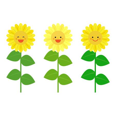 girasol: sonriendo girasoles
