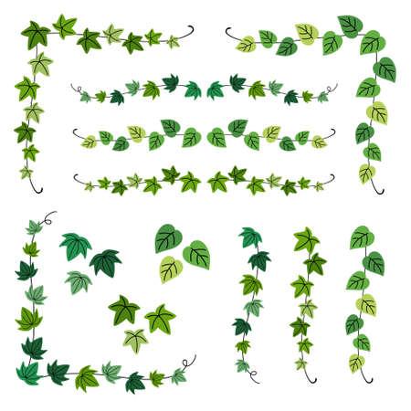 set of ivy branch frames