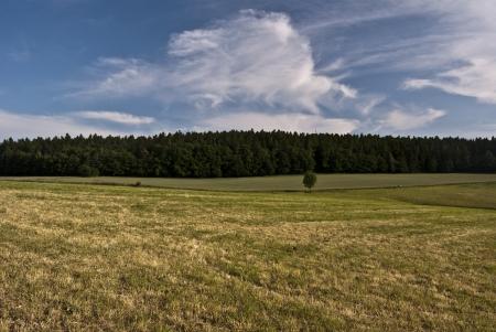 olomouc: nice landscape near Olomouc city with blue sky and some clouds Stock Photo