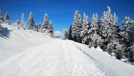 bellow: invierno para�so abajo Lysa hora en Moravskoslezsk� Beskydy Foto de archivo
