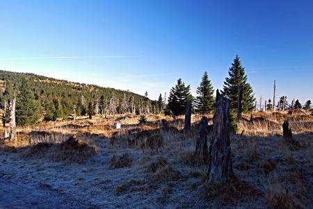 krkonose: autumn morning in Krkonose mountains near Cihadlo hill