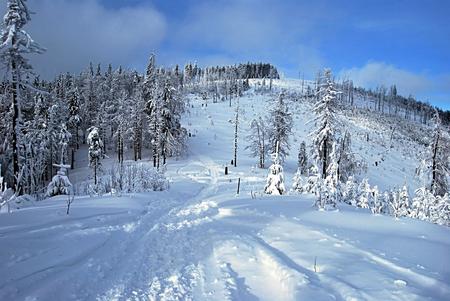skala: Malinowska Skala hill in Beskid Slaski mountains in nice winter day