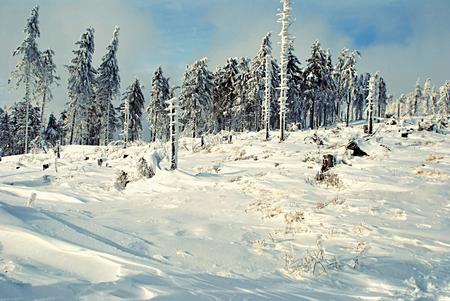 skala: winter mountains - on Malinowska Skala hill in Beskid Slaski