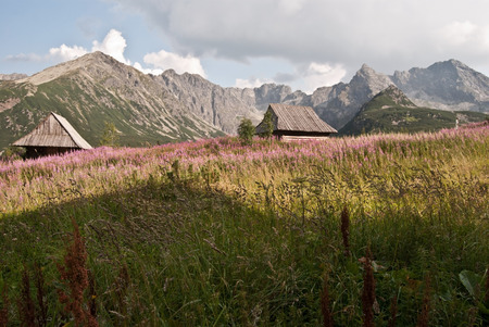sheepfold: Dolina Gasienicowa valley with sheepfold and peaks around in Tatry mountains