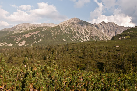 tatry: Dolina Zielona Gasienicowa valley in Tatry mountains Stock Photo