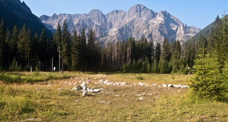 tatry: morning Tatry mountains peaks during hiking to Rysy