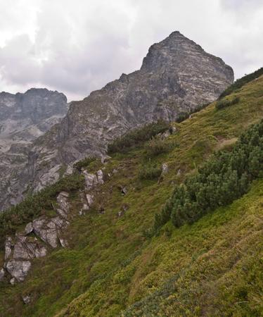 tatry: Koscielec peak above Dolina Gasienicowa in Tatry mountains