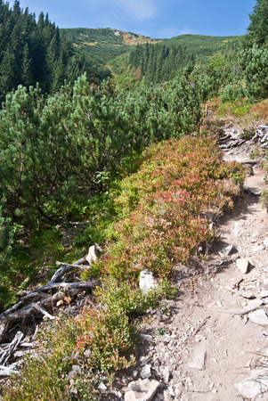 tatry: hiking trail in Tatry mountains