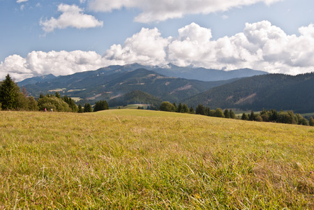 velke: panorama of Tatry mountains from meadow near Velke Borove village in Slovakia