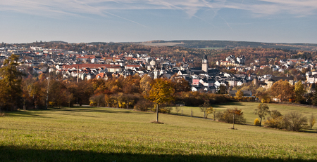 frontyard: panorama of Plauen city in Saxony with meadow and isolated tree on the frontyard Stock Photo