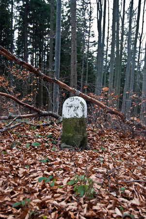 boundary: old boundary stone in autumn Moravskoslezske Beskydy mountains with trees and fallen leaves Stock Photo