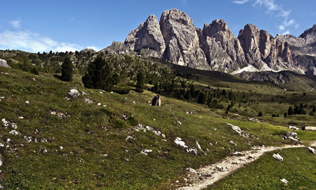 odle: hiking trail with meadow, panorama of Odle mountain group with sharp Grosse Fermeda peak and nice sky with only few clouds above Val Gardena valley in Dolomites