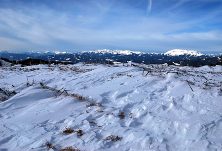 mountain meadow: winter mountain meadow with snow and Austrian Alps mountain peaks on the background
