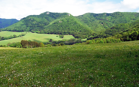 skala: flowering spring meadow with mountain range of Strazovske vrchy mountains with Rohata skala on the background Stock Photo