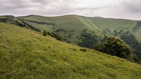 mountain meadow: Velka Fatra mountain ridge with Krizna hill from Mala Krizna hill covered by mountain meadow